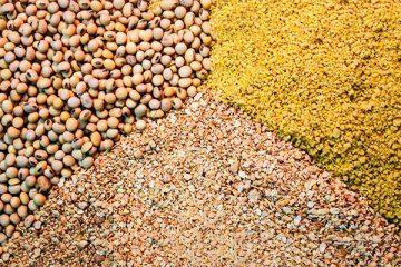 Animal nutrition ingredients